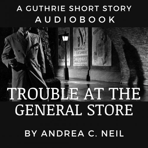 trouble at the general store audiobook